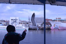 三崎の海の画像048