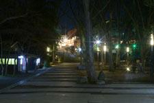 井の頭恩賜公園の満開の夜桜の画像034