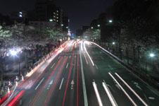 靖国神社の満開の夜桜の画像005