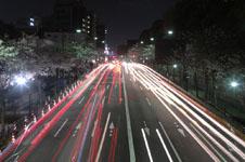 靖国神社の満開の夜桜の画像007