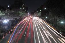 靖国神社の満開の夜桜の画像008