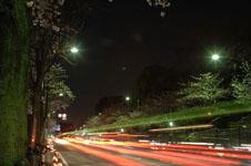 靖国神社の満開の夜桜の画像012