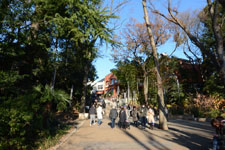 井の頭恩賜公園の画像001