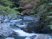 石立山の川の画像002
