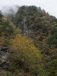 別府峡の紅葉の画像002