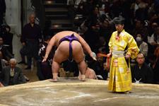 大相撲 佐田の海 貴士の画像001