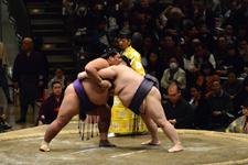 大相撲 佐田の海 貴士と明瀬山 光彦の画像012