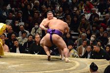 大相撲の画像素材 - FunImage