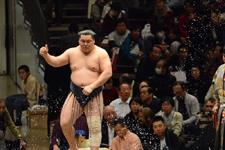 大相撲 青狼 武士の画像004