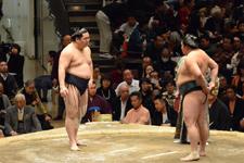 大相撲 青狼 武士と鏡桜 南二の画像003