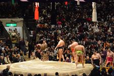 大相撲 幕内土俵入りの画像006