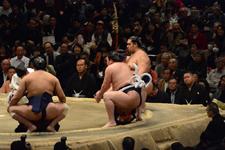 大相撲 横綱土俵入りと白鵬 翔と魁聖 一郎と旭秀鵬 滉規の画像008