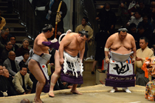 大相撲 横綱土俵入りと鶴竜 力三郎と蒼国 来栄吉と豊ノ島 大樹の画像003