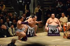 大相撲 横綱土俵入りと鶴竜 力三郎と蒼国 来栄吉と豊ノ島 大樹の画像005