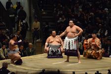 大相撲 横綱土俵入りと鶴竜 力三郎と蒼国 来栄吉と豊ノ島 大樹の画像011