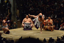 大相撲 横綱土俵入りと鶴竜 力三郎と蒼国 来栄吉と豊ノ島 大樹の画像012