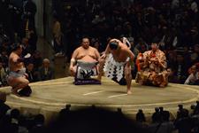 大相撲 横綱土俵入りと鶴竜 力三郎と蒼国 来栄吉と豊ノ島 大樹の画像013