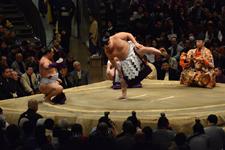 大相撲 横綱土俵入りと鶴竜 力三郎と蒼国 来栄吉と豊ノ島 大樹の画像021