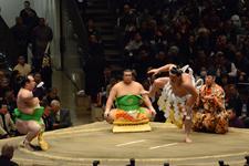 大相撲 横綱土俵入りと日馬富士 公平と宝富士 大輔と誉富士 歓之の画像014