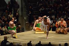 大相撲 横綱土俵入りと日馬富士 公平と宝富士 大輔と誉富士 歓之の画像025