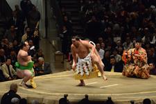 大相撲 横綱土俵入りと日馬富士 公平と宝富士 大輔と誉富士 歓之の画像030
