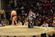 大相撲 豪風 旭の画像002