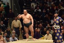 大相撲 北太樹 明義の画像002