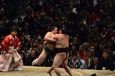 大相撲 佐田の海 貴士と正代 直也の画像003
