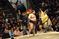 大相撲 髙安 晃の画像002