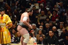 大相撲 安美錦 竜児の画像001