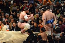大相撲 安美錦 竜児と碧山 亘右の画像011