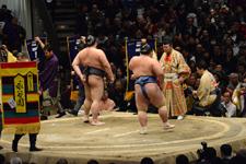 大相撲 稀勢の里 寛と琴奨菊 和弘の画像002