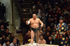 大相撲 日馬富士 公平の画像004