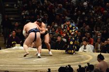大相撲 日馬富士 公平と勢 翔太の画像009