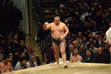 大相撲 鶴竜 力三郎の画像004