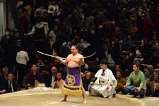 大相撲 聡ノ富士と式守伊之助の画像021