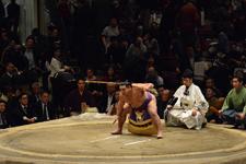 大相撲 聡ノ富士と式守伊之助の画像024