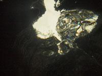 ユカタン半島のグランセノーテの画像004