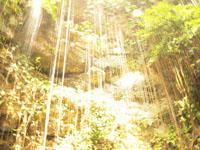 ユカタン半島のグランセノーテの画像011