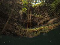 ユカタン半島のグランセノーテの画像014