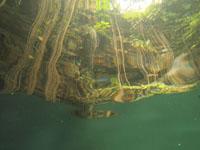 ユカタン半島のグランセノーテの画像017