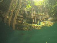 ユカタン半島のグランセノーテの画像019
