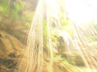 ユカタン半島のグランセノーテの画像028