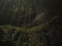 ユカタン半島のグランセノーテの画像035