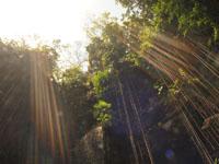 ユカタン半島のグランセノーテの画像037