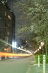 木屋町通り高瀬川の夜桜の画像004