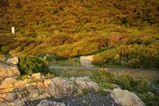 室戸岬の海岸の画像008