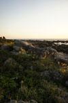 室戸岬の海岸の画像010