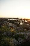室戸岬の海岸の画像011