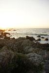 室戸岬の海岸の画像012